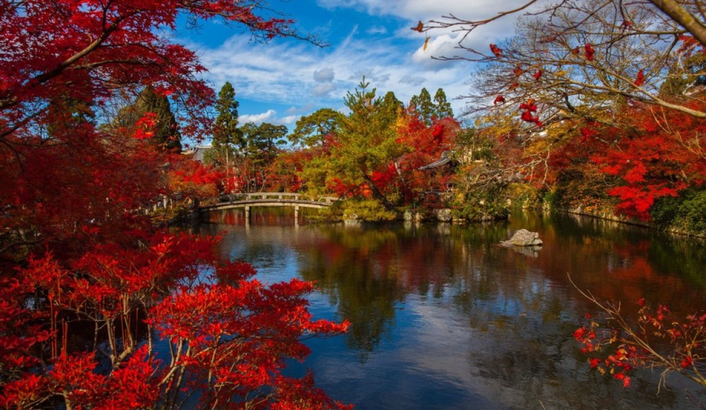 Leaf-Peeping In Japan: 2019 Fall Foliage Forecast
