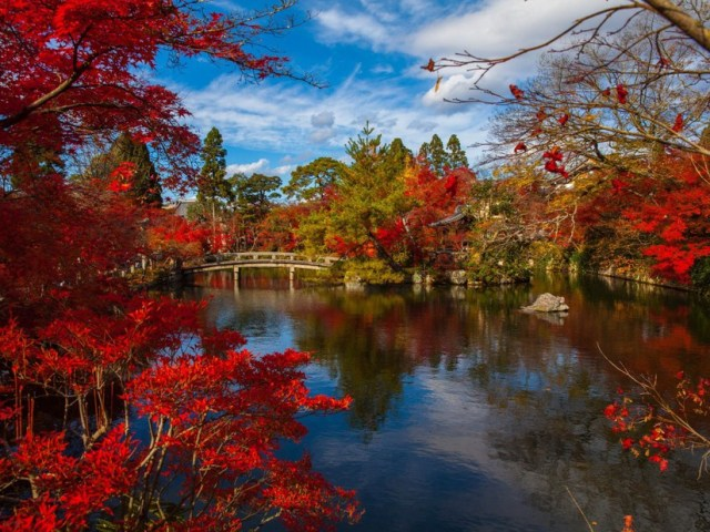 Leaf-Peeping In Japan: 2019 Fall Foliage Forecast