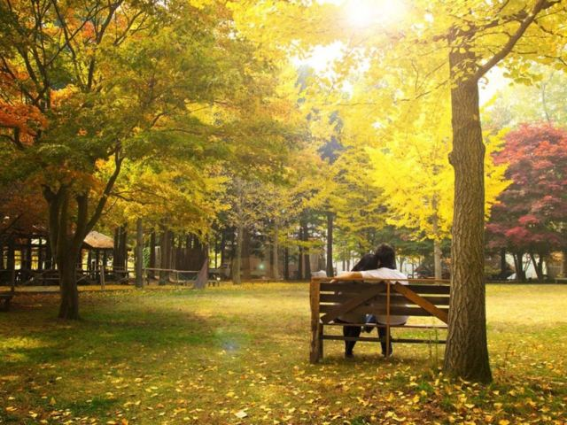 South Korea's Most Dramatic Spots to View Fall Foliage