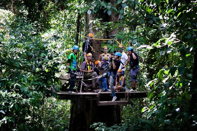 Zip-lining in Bangkok ensures a wondrous view of the floral and fauna in Thailand's rainforests