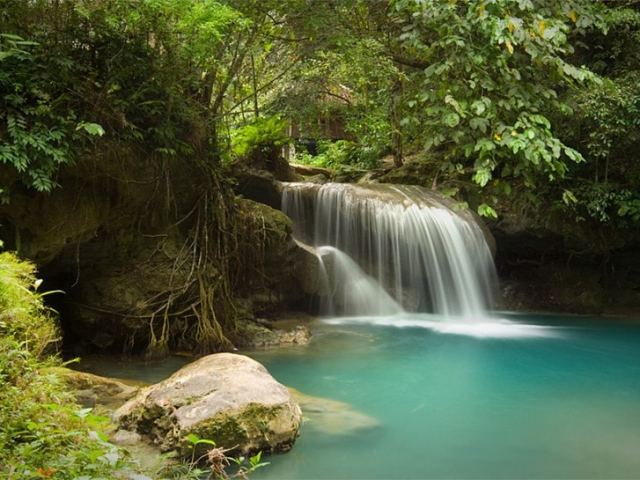 Everything You Need to Know About Kawasan Falls and Canyoneering in Cebu, Philippines