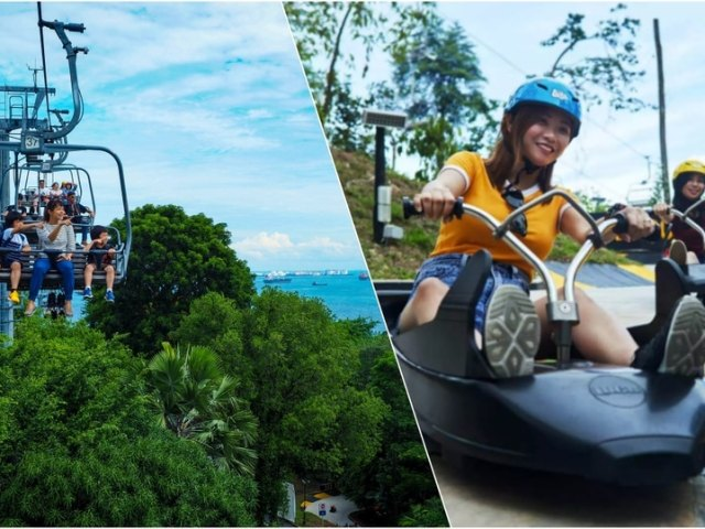 Experience the Thrill of Luge Racing: A Guide to Singapore Skyline Luge and Skyride