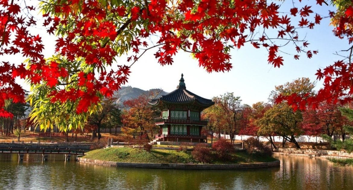 Why YOU Want to Visit Korea