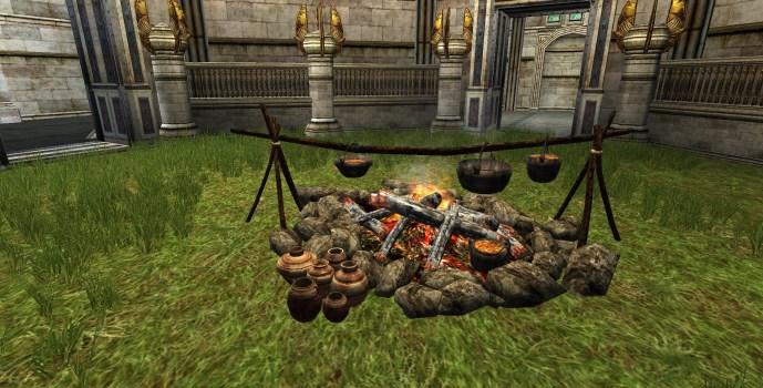 Modest Cookfire