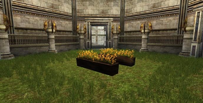 Orange Flowerbox
