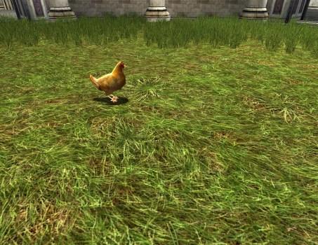Red Lawn Chicken