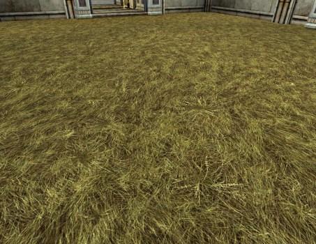 Yellow Grass Floor