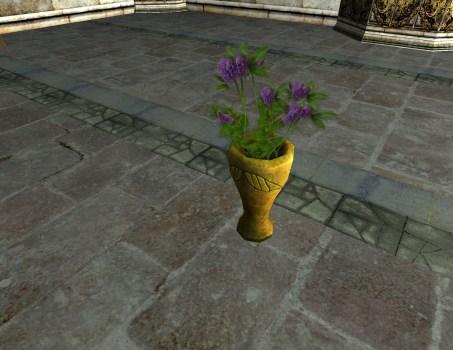 Vase of Purple Clover