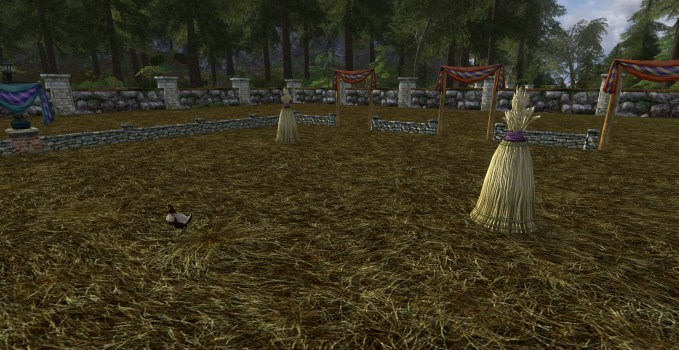 Large Hobnanigans Field with Scrapper Chicken