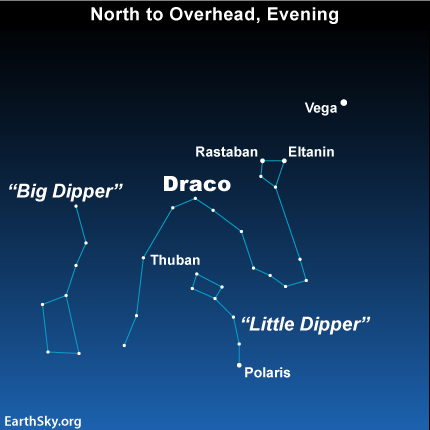 Image result for june night sky draco