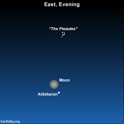 The moon is not quite full on Sunday night, December 15, 2013.  The bright star nearby is Aldebaran in the constellation Taurus.