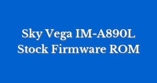 Sky Vega IM-A890L