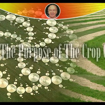 What's The Purpose of The Crop Circles?
