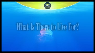 What Is There to Live For?