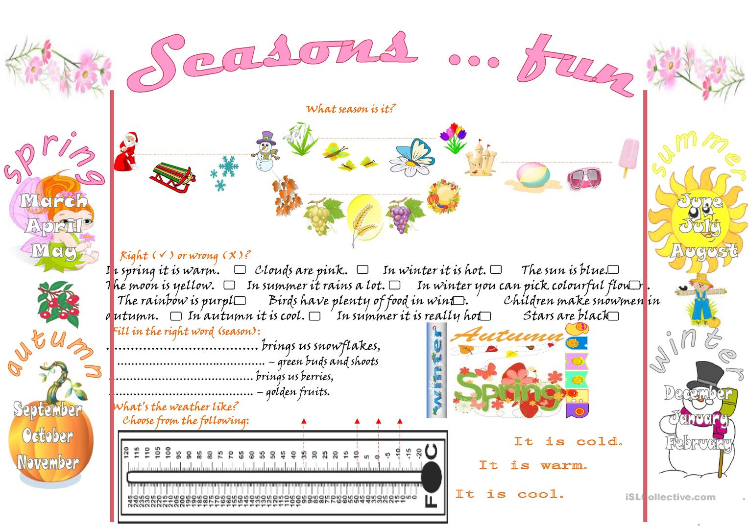 Seasons Fun Worksheet