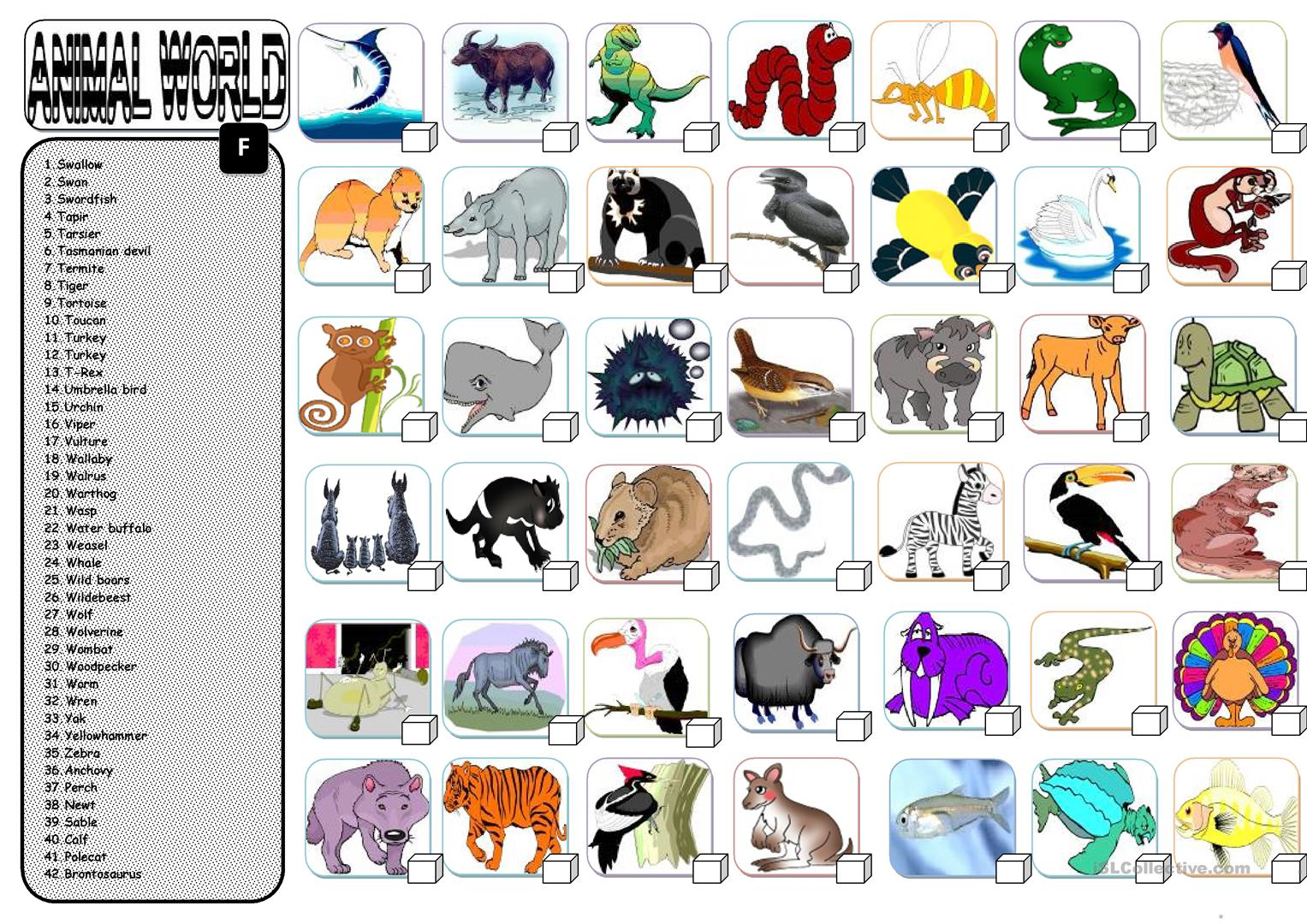 Animals 6 6 Worksheet
