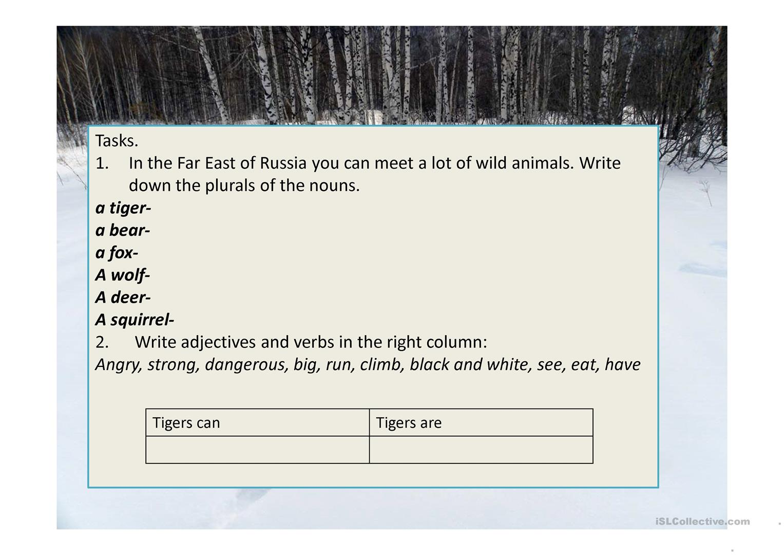 Amur Tiger Some Facts About The Animals Worksheet