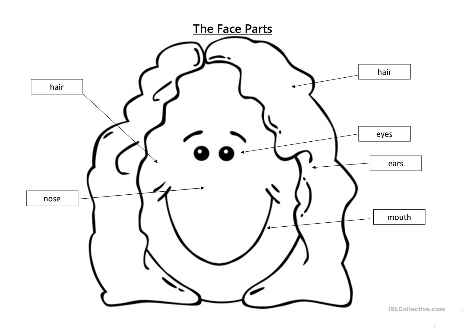 Parts Of The Face Worksheet Face Body Parts Worksheets