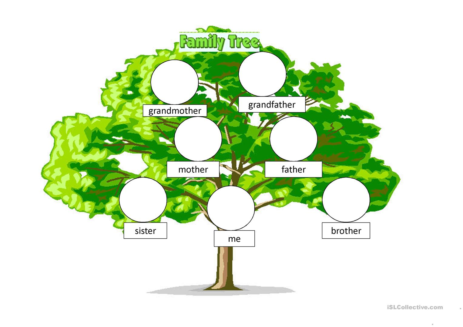 Beginners Family Tree