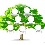 Beginners Family Tree English Esl Powerpoints For Distance Learning And Physical Classrooms