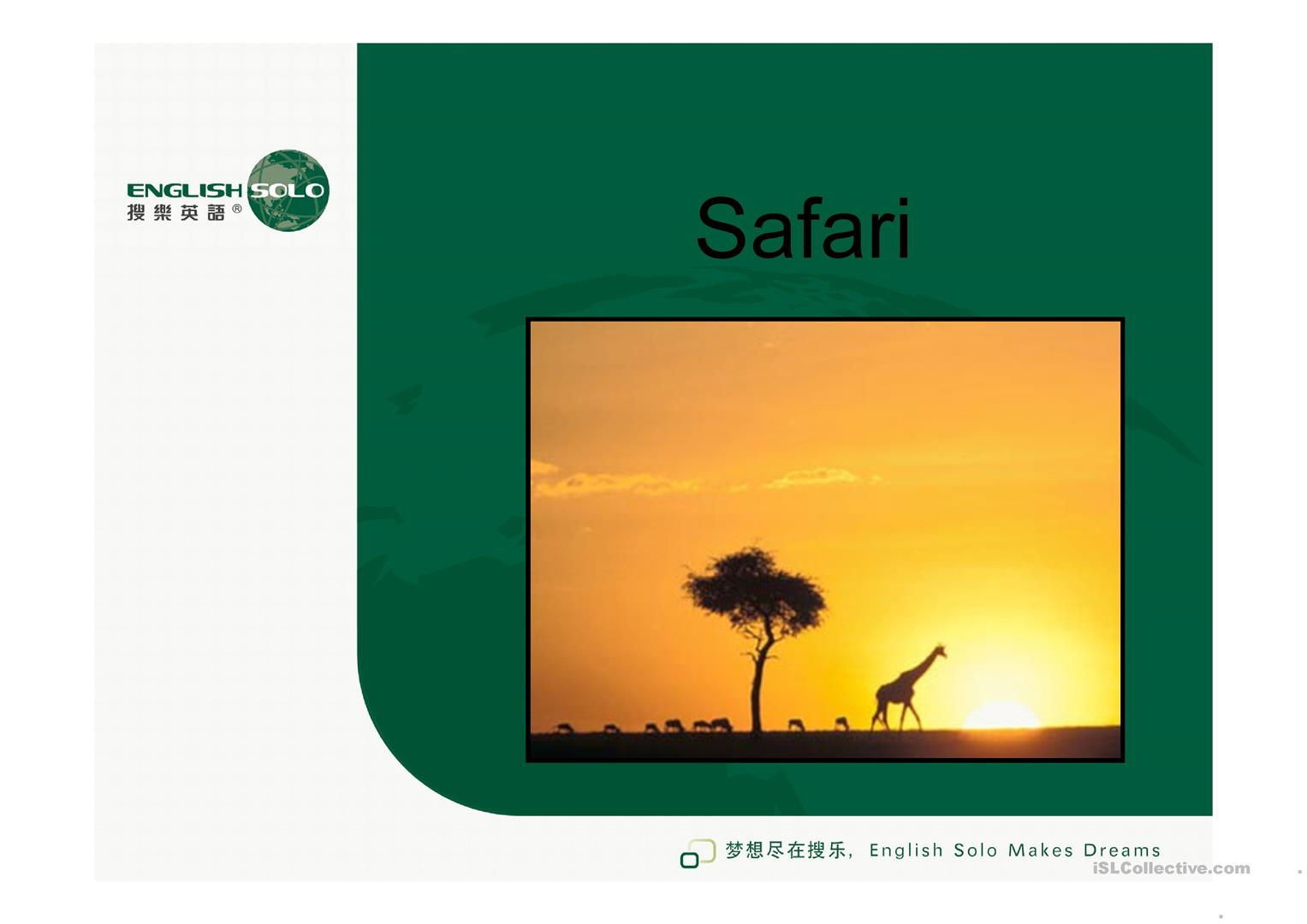 Safari Worksheet