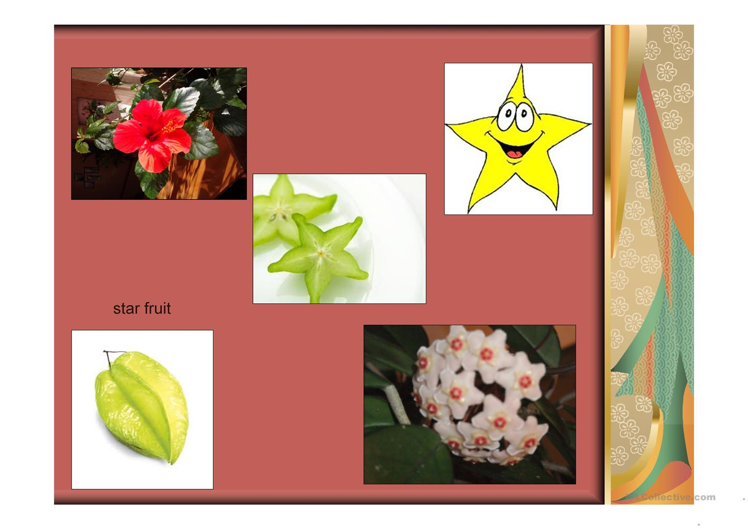 Shapes Of Different Objects Worksheet