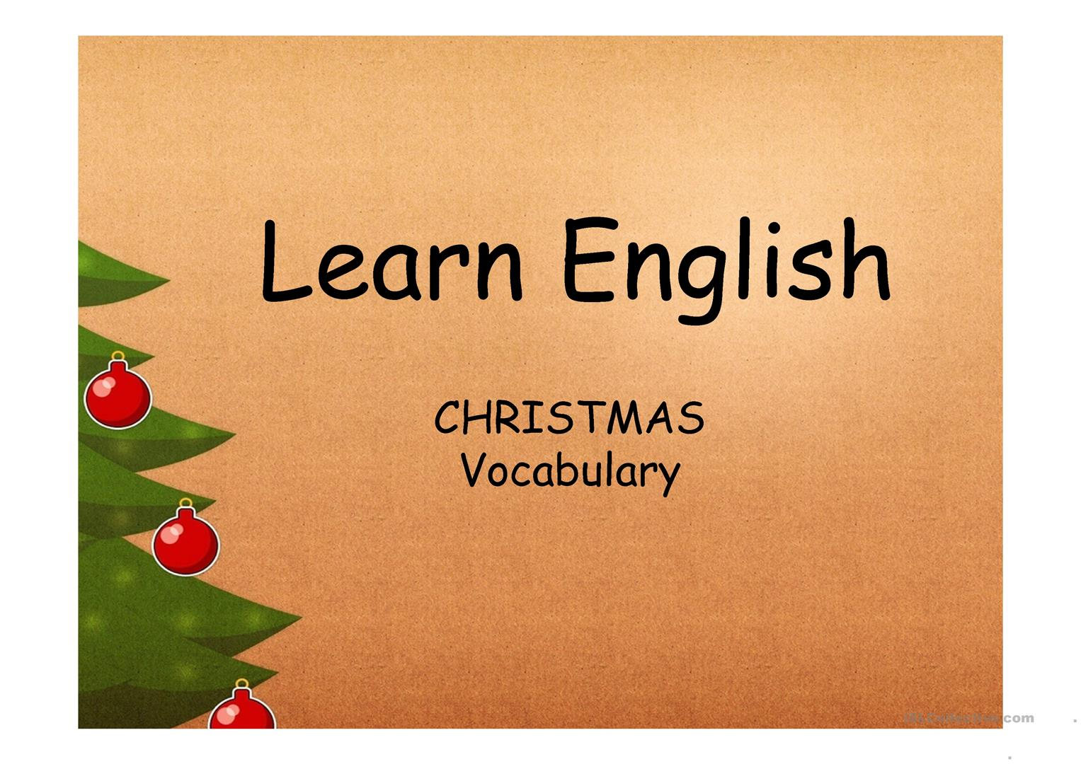Christmas Vocabulary Worksheet