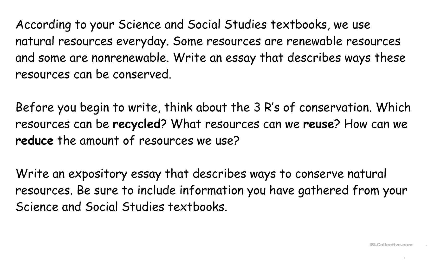 Resources Essay Prompt Worksheet