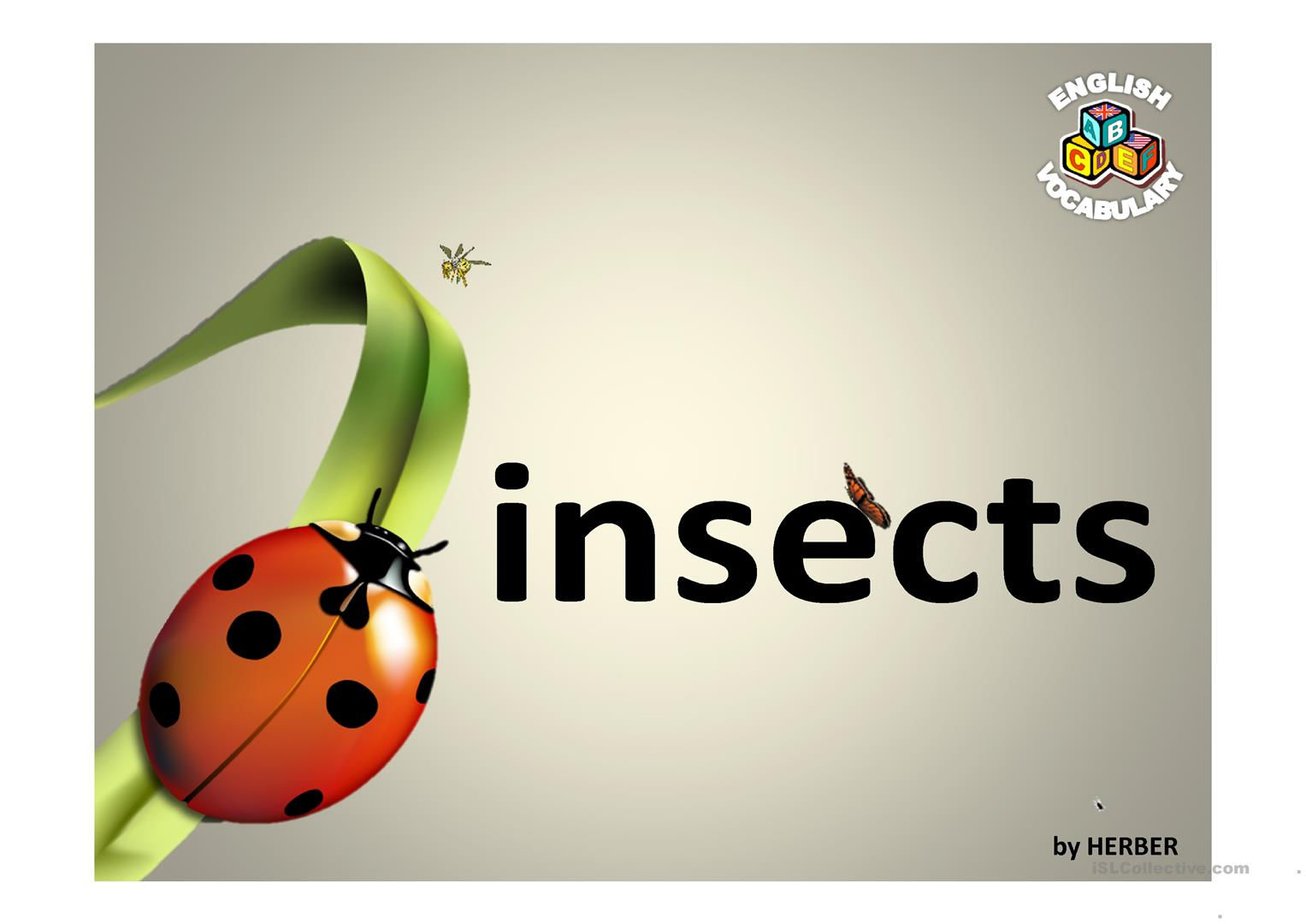 Insects Ppt