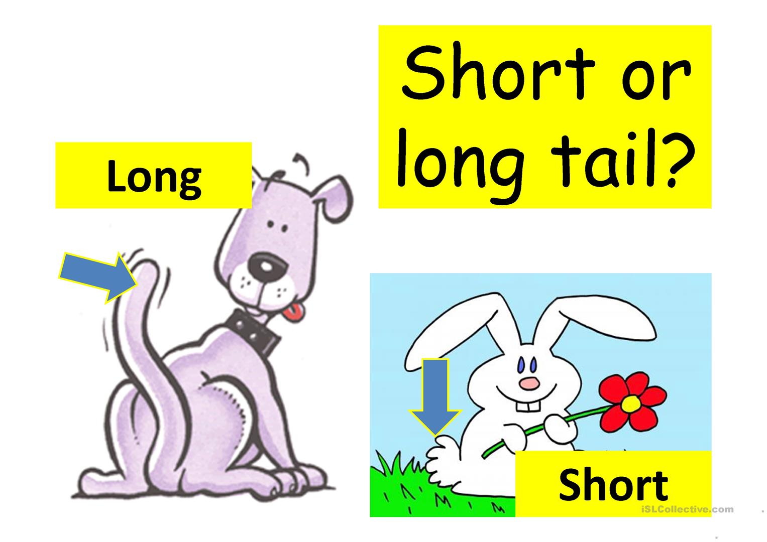Tall And Short Worksheets