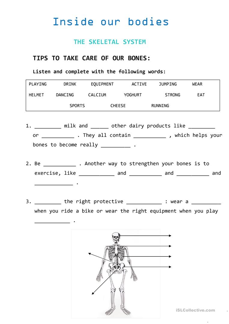 Tips To Take Care Of Our Bones Worksheet
