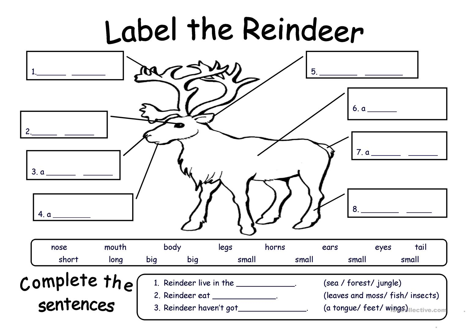 Reindeer Games Printable Worksheet