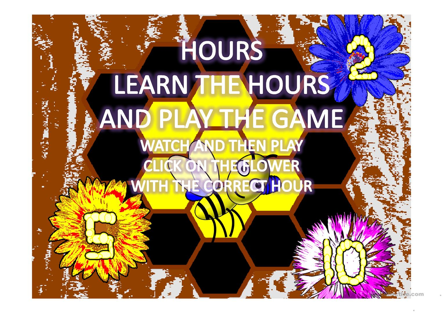 Hours Honey Bee Worksheet