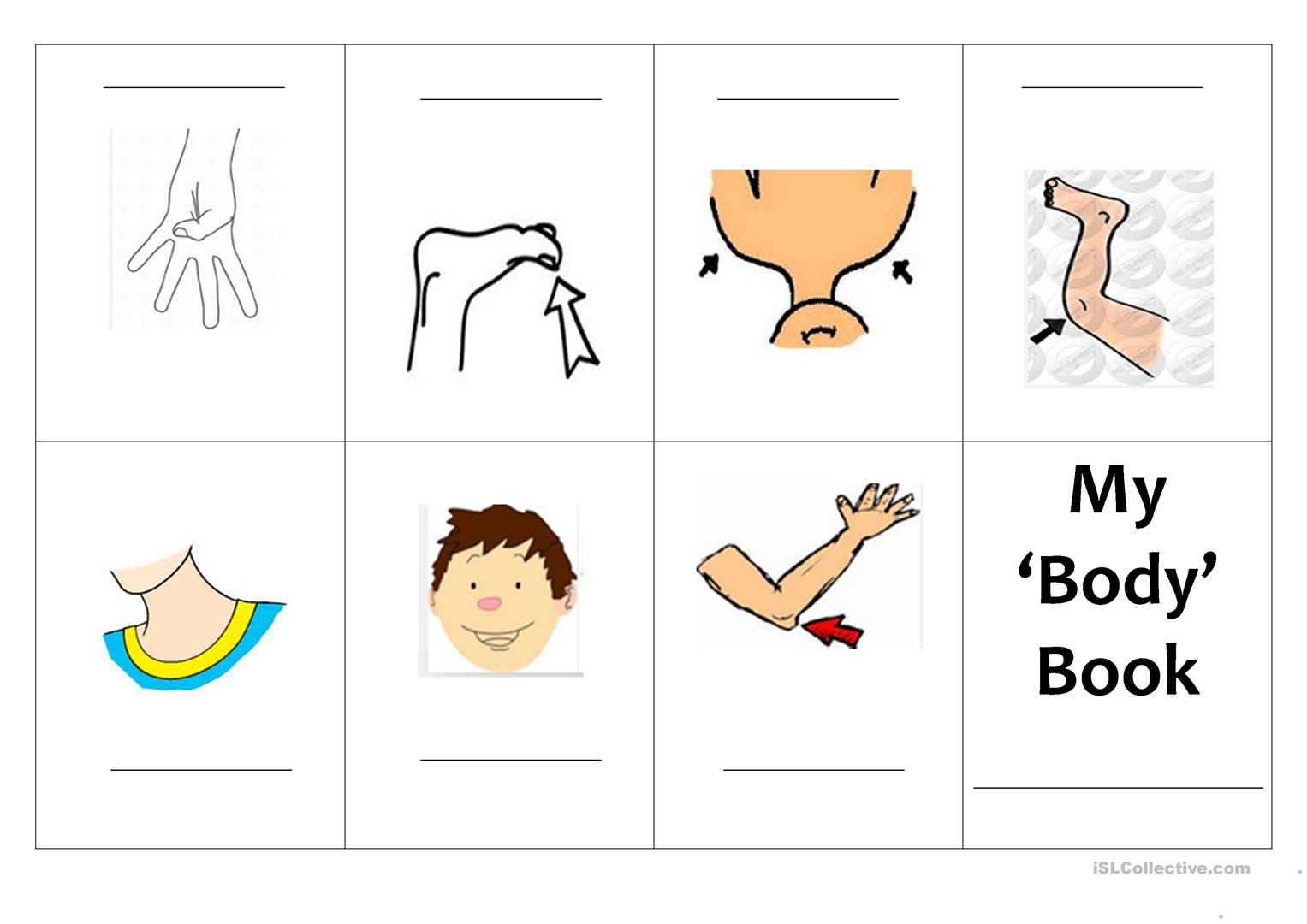 Mini Book Body Part Worksheet