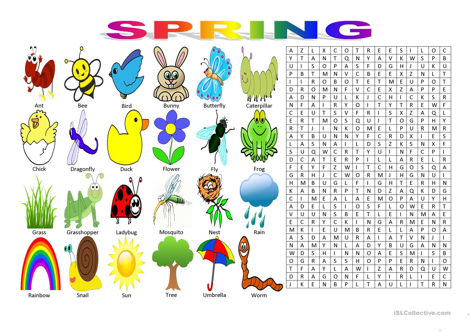 Spring Vocabulary Wordsearch Puzzle