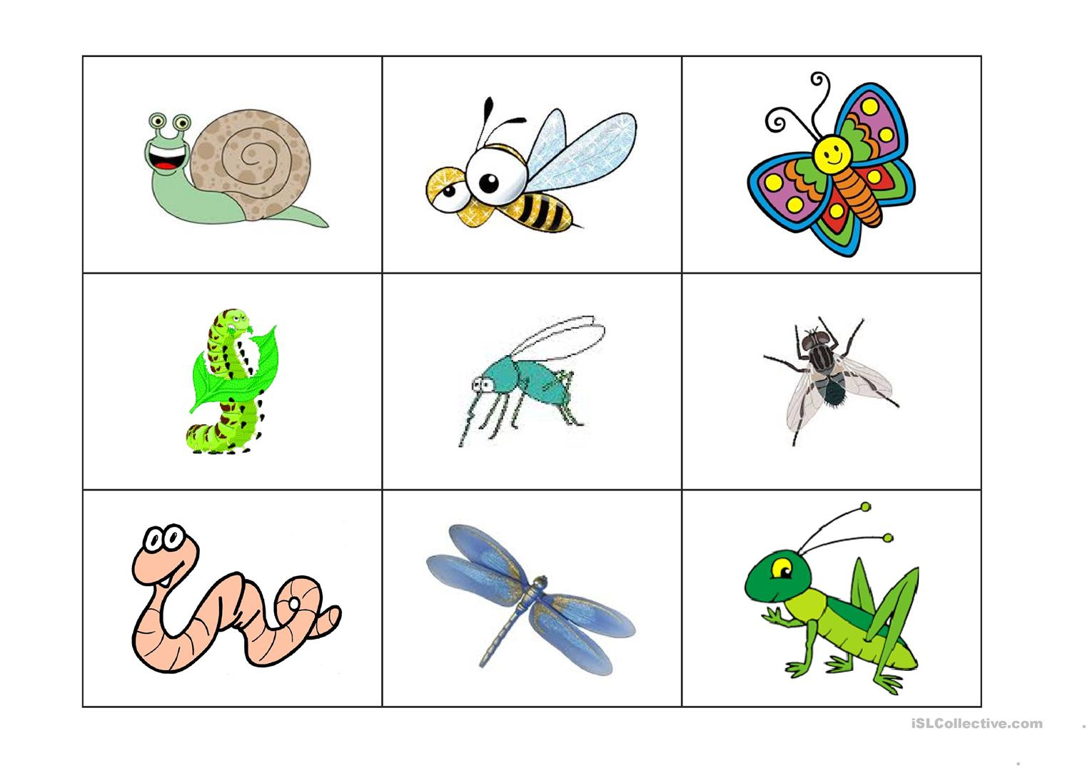 Insect Printable That Are Modest