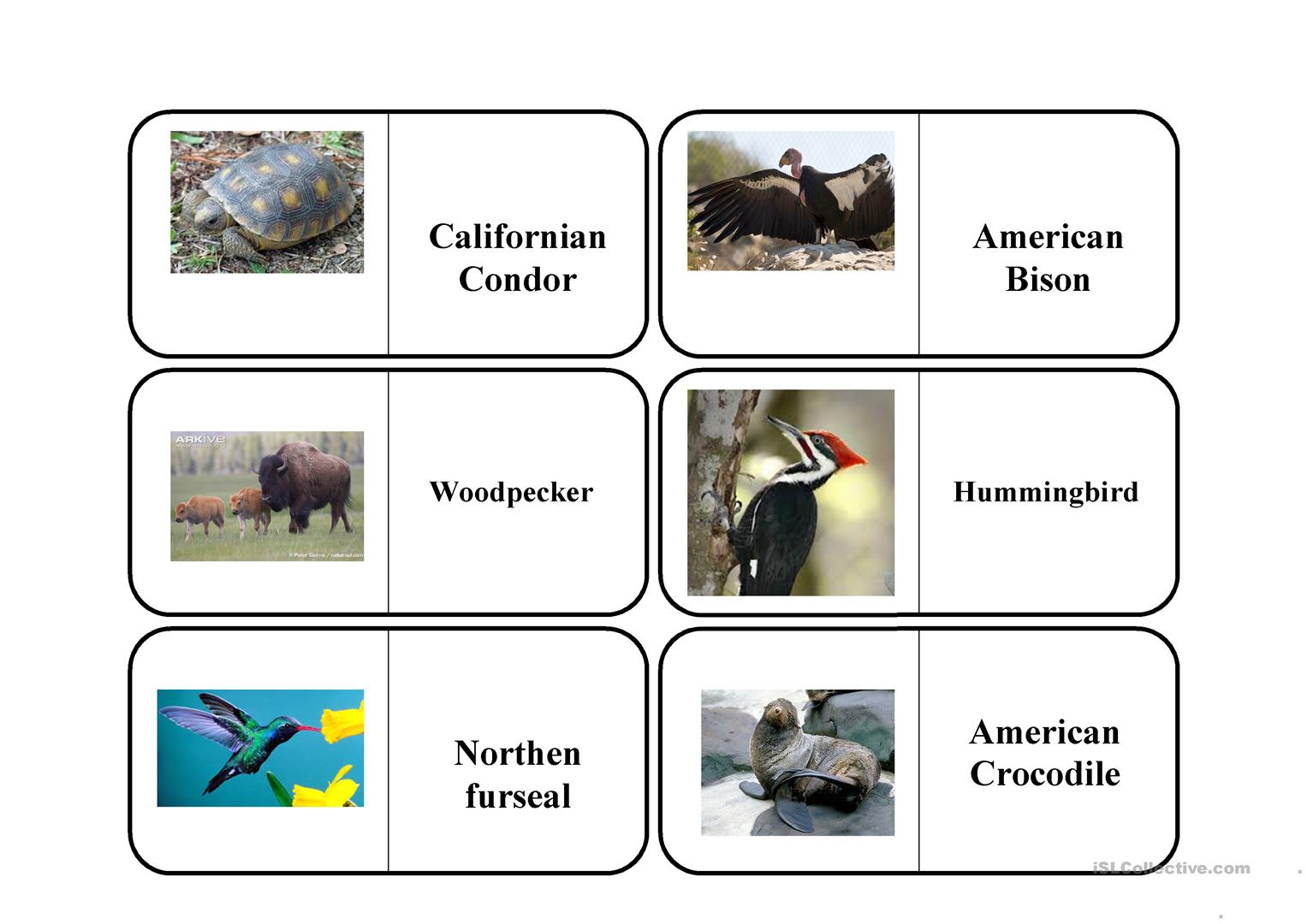 Endangered And Extinct Animals Worksheet