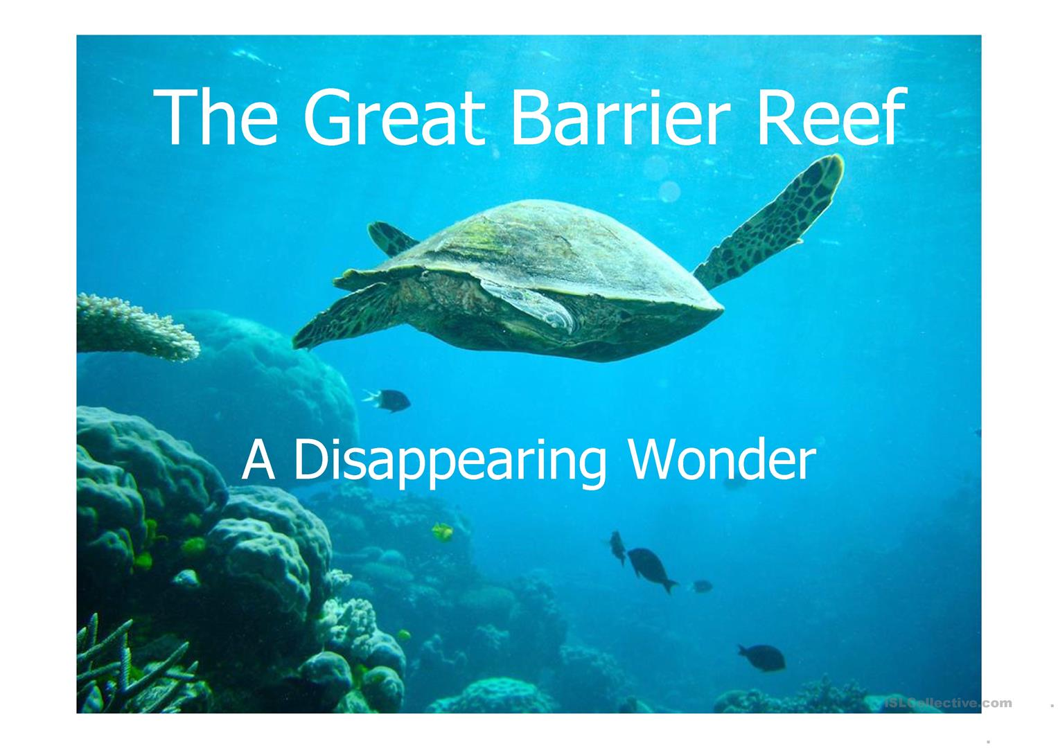 Great Barrier Reef Lesson