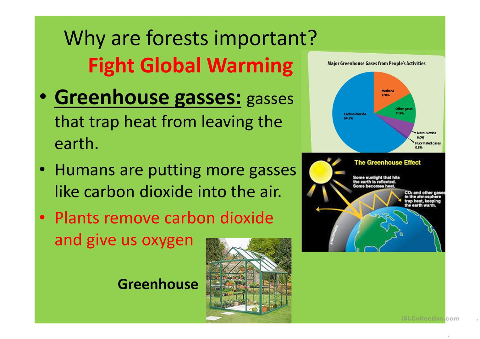 About Deforestation And Global Warming