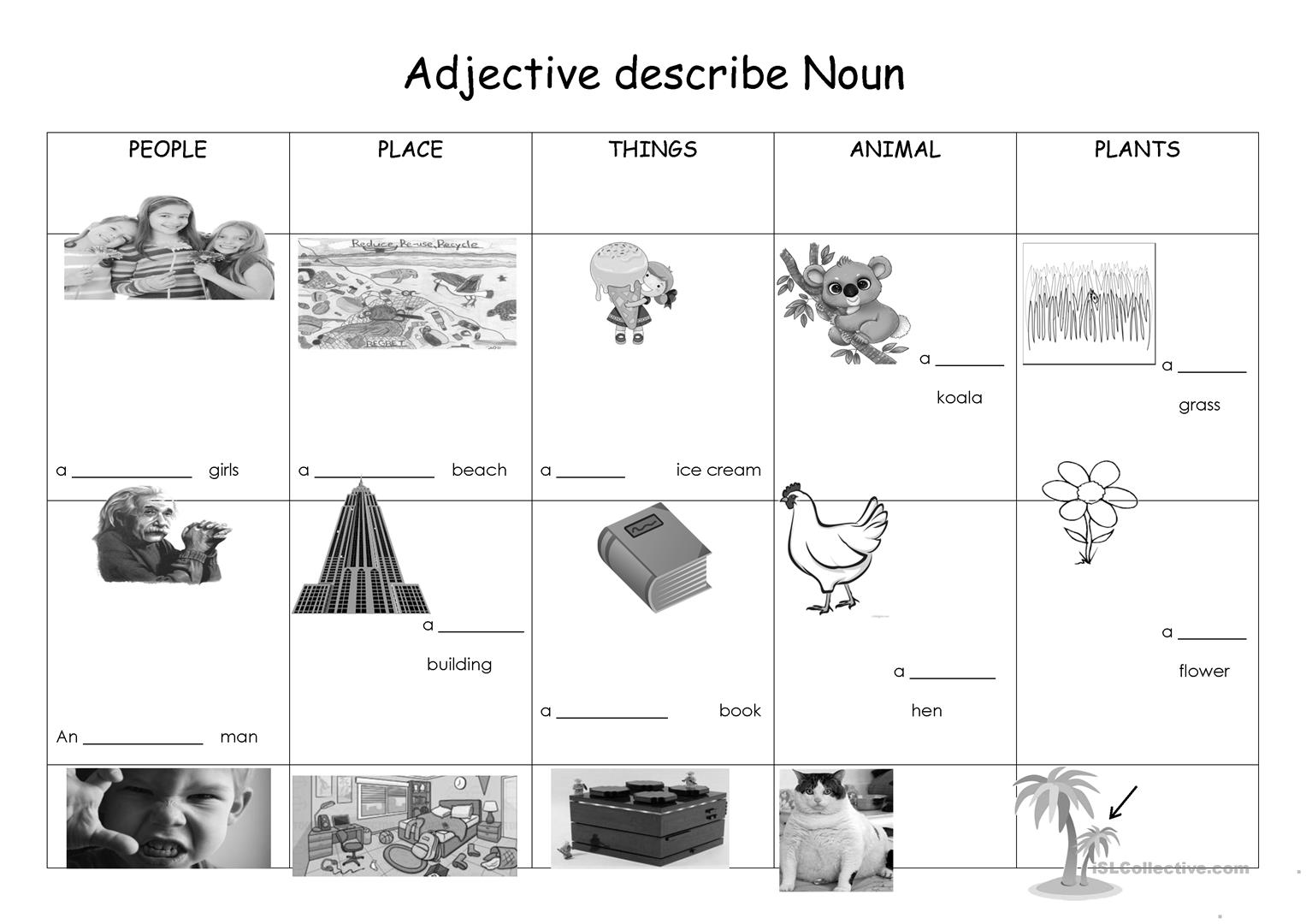 Adjective Describe Noun Worksheet