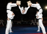 Members of the WTF Taekwondo Presentation Team.