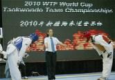 2010-07-20_(1589)x_masTaekwondo_WTFphoto_WTF2010_WorldCupTeam_06