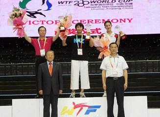 2010-07-20_(1589)x_masTaekwondo_WTFphoto_WTF2010_WorldCupTeam_12