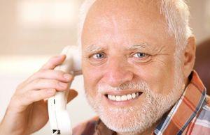 Hide The Pain Harold Meming Wiki