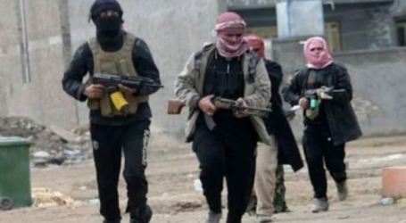 ISIL SOLDIERS OF FORTUNE ARE FIGHTING FOR USA IN IRAQ WAR