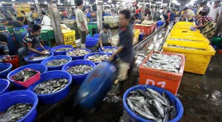 INTERNATIONAL AGREEMENTS CONSIDERED HAMPERING INDONESIAN FISH EXPORTS