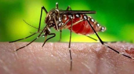 CLIMATE CHANGE, CITY GROWTH INCREASE RISK OF DENGUE FEVER