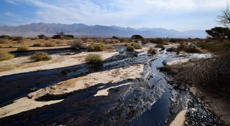 'MILLIONS OF LITERS' OIL SPILLED IN ISRAEL, FLOODING NATURE RESERVE