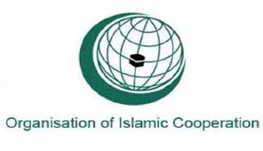 OIC CHIEF VOICES DEEP DISAPPOINTMENT OVER FAILURE OF PALESTINIAN RESOLUTION AT UN