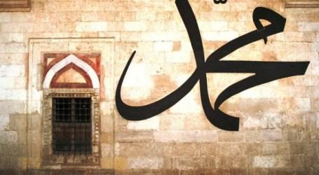 WHO IS MUHAMMAD (PBUH)?